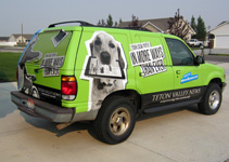 Green car wrap for newspaper